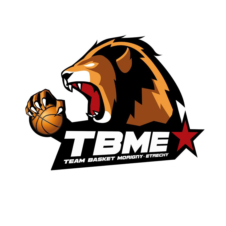 Logo Team Lion Blanc 1